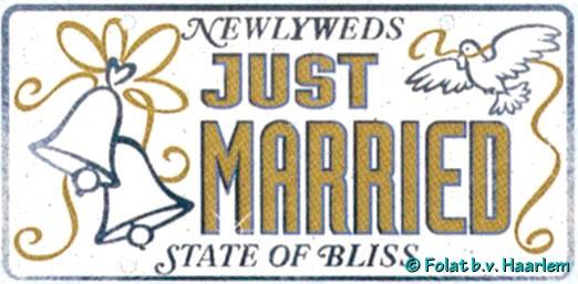 Deurbord Just Married Zilver/Wit-0