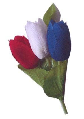 Broche 3 tulpen rood/wit/blauw-0