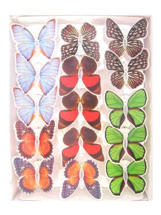Vlinder met licht op speld-0
