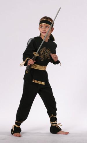 Ninja Dragon-0