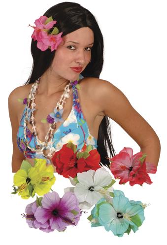 Haar clip hawai-0
