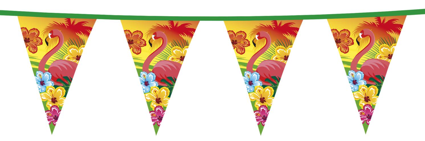 Vlaggenlijn hawai-0