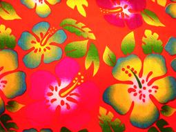 Hawaishirt pink-0