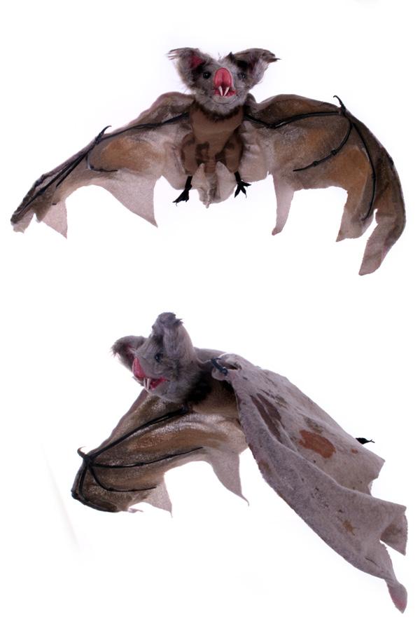 Vleermuis 43 x 90 cm. -0