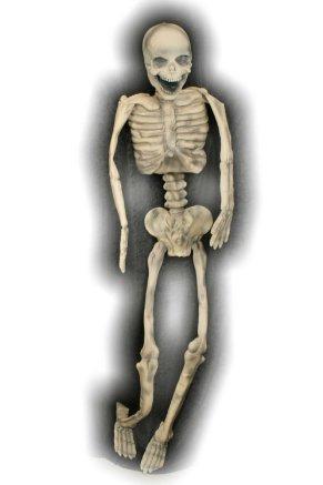 Skelet rubber groot (Halloween)-0