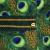 Peacock lang-262527