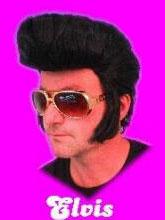 Pruik Elvis zwart 1