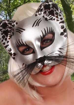 Oog halfmasker zilver/zwart kat 1