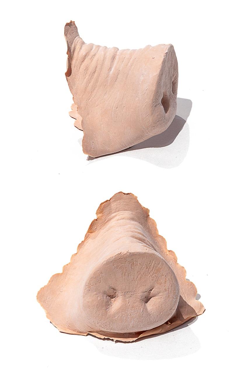 PXP Professional Colours Latex varkensneus 1