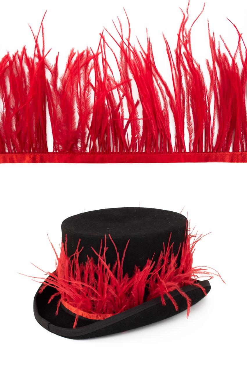Struisvogelveer op band rood 3m 1