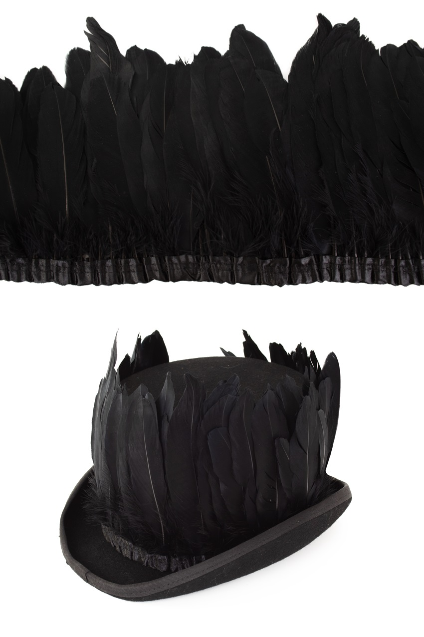 Ganzenveer op band zwart 3m 1