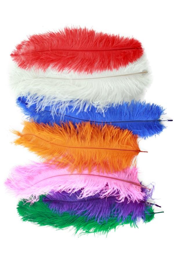 Floss veren ± 30 cm assorti kleuren 1