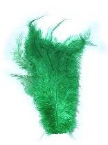 Floss veren groen (Piet veren) ± 30cm 1