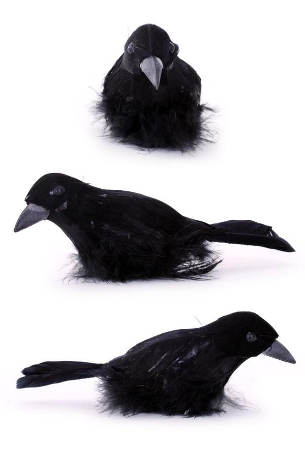 Zwarte raaf 15cm 1