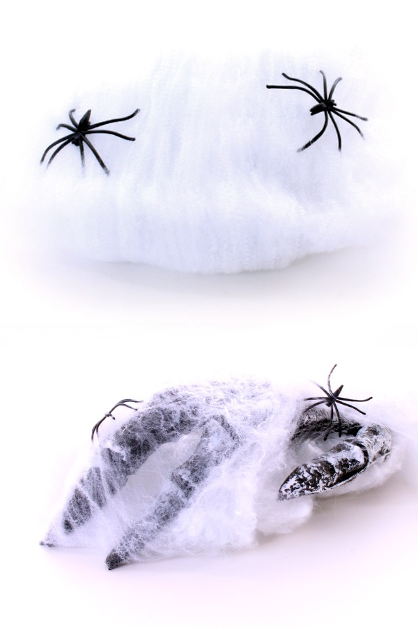Spinnenweb met 2 spinnen 1