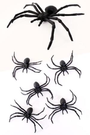 5 spinnen 10cm in z.b.