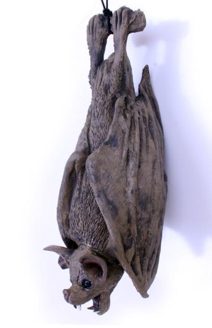 Vleermuis rubber 1