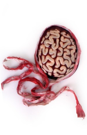 Muts zombie hersenen