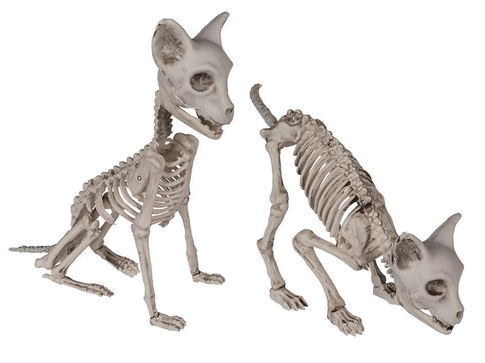 Halloween figuur, kattenskelet 32 cm 1