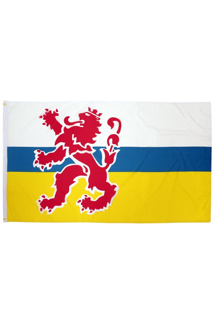 Vlag Limburg met leeuw 90 x 150 cm